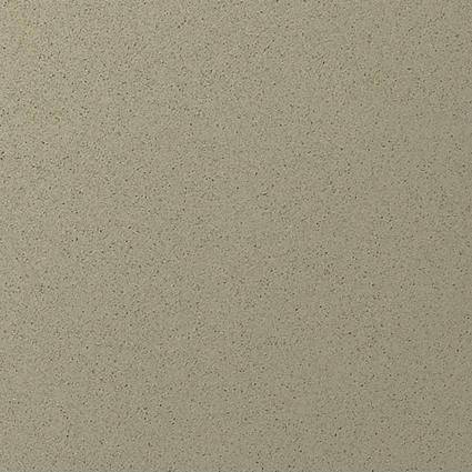 chinchilla1-480x480